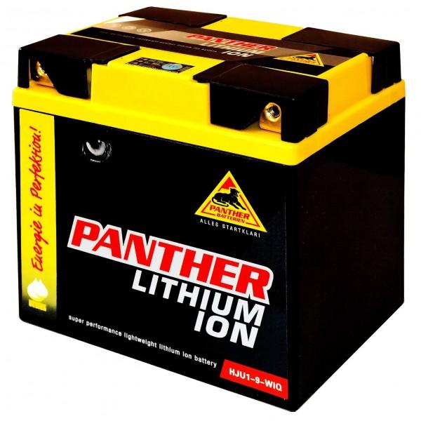 Panther Lithium Aufsitzmäher 12V 300A Rasentraktor 53030 PHJU1-9-FP